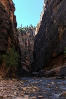Zion_National_park_7