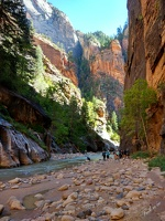 Zion_National_park_22